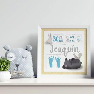 Natalicio personalizado para bebé recién nacido, modelo animales